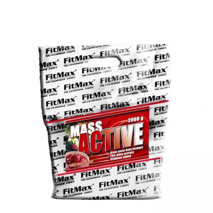 Πρωτείνη όγκου Fit Max Μass Active 2000gr
