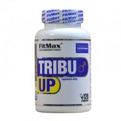 Ενίσχυση Τεστοστερόνης Fitmax Tribu Up 120 Caps